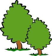 two green trees as a graphic illustration