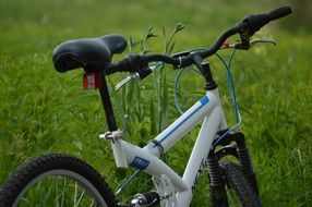 white bicycle on green grass