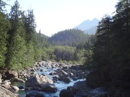 mountain river on Vancouver Island