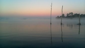 foggy mysterious morning lake