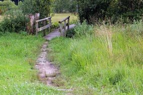 wooden bridge over a ditch in a meadow