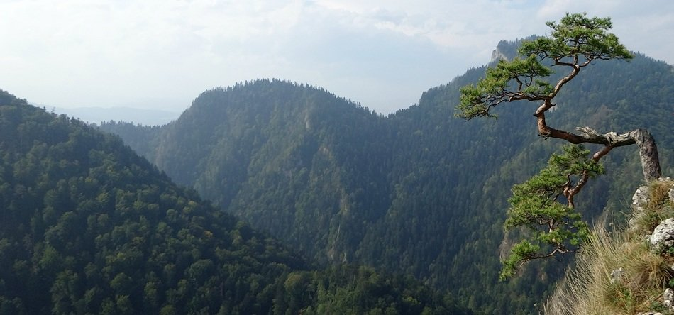 panorama of the green mountain system of the Pyrenees in Poland