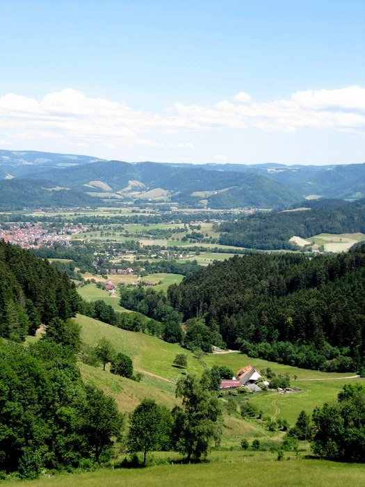 scenic landscapes in Oberried