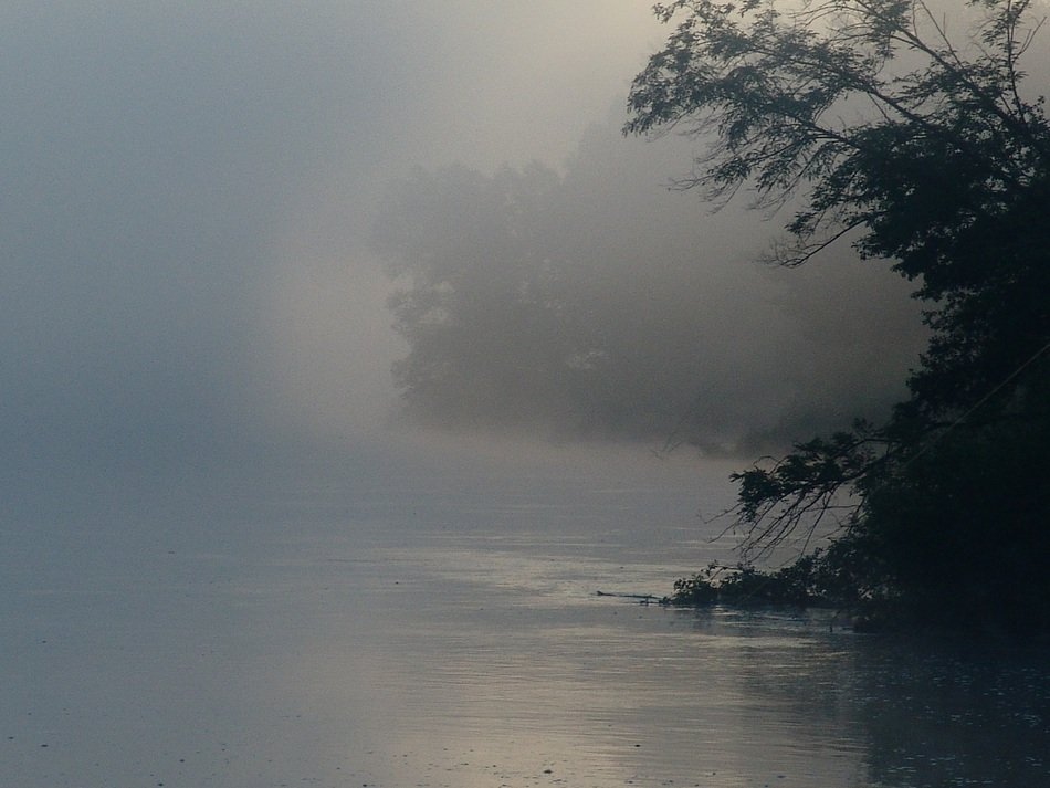 Drava river in the fog