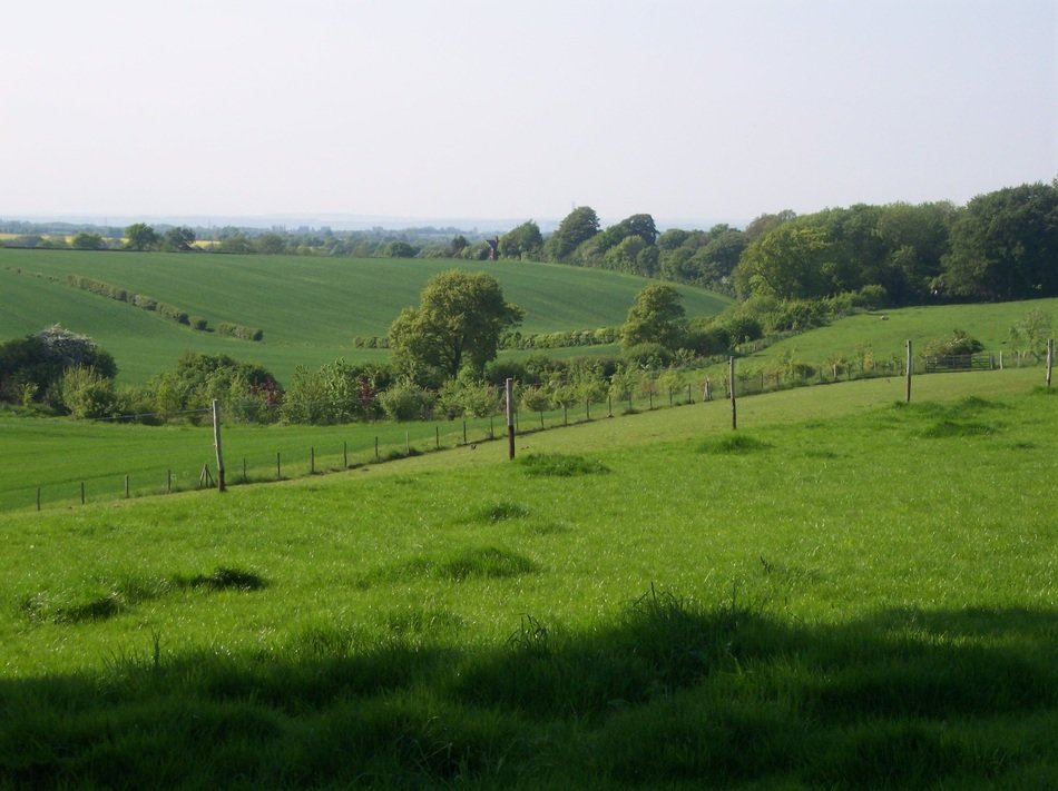 idyllic green countryside, uk, england, north downs, kent