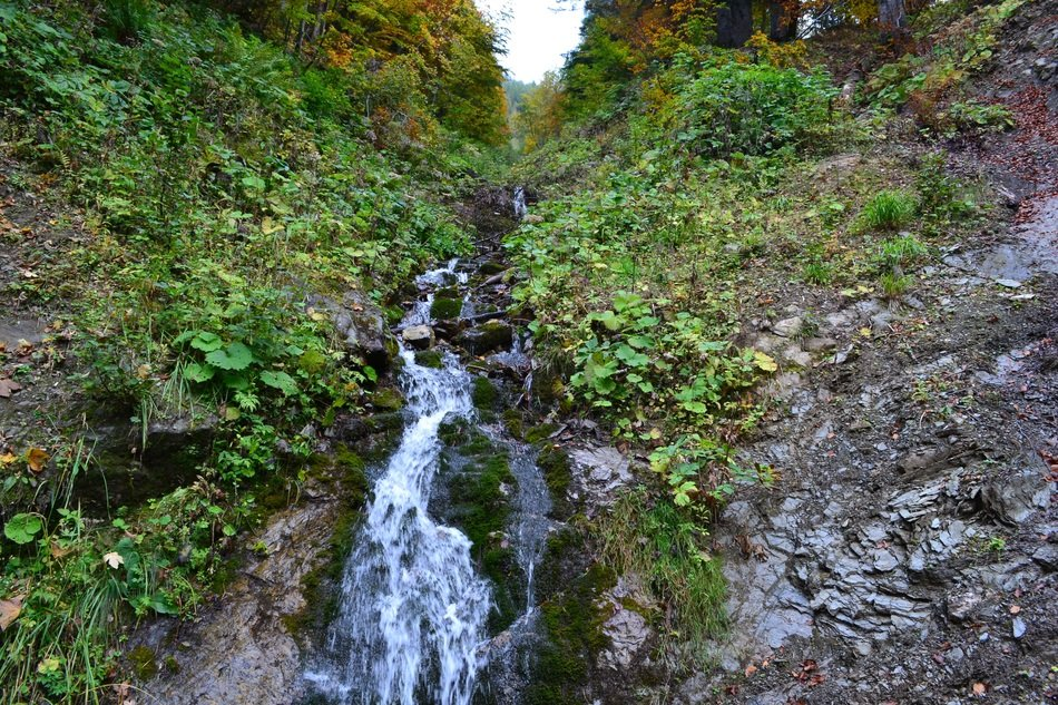 murmur of a creek in the mountains in Hermagor, Austria