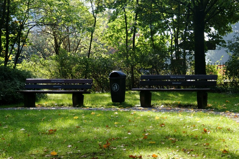 Benches in the green park