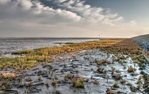 norderney watts autumn hdr