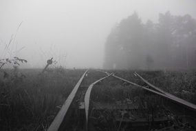 railroad tracks amid wetlands in fog