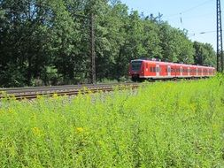 red train on railway tracks among nature in germany