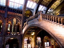 famous natural history museum in London