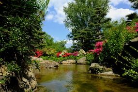 absolutely gorgeous japanese garden