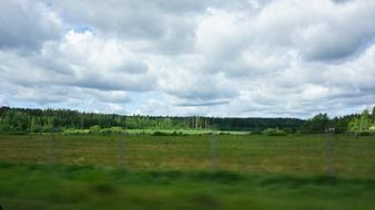 finnish forest landscape from a car window
