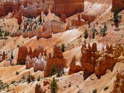 pyramids among the sand in Bryce Canyon