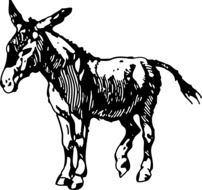 donkey as a graphic image