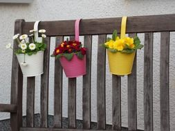 colorful flower pots on a wooden bench