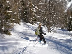 ski tours in the forests of Italy