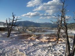 limestone terraces in the yellowstone national park