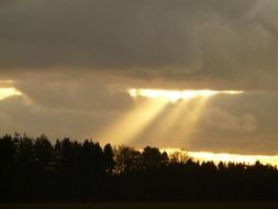 sunbeams through dark clouds on the forest