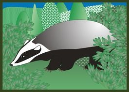 Badger on meadow clipart