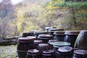 Jars in autumn time
