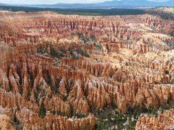 view from above onto the rocks in Bryce Canyon