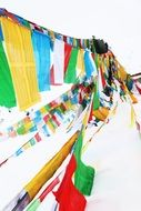 colorful prayer flags in tibet