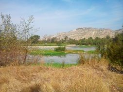 rural ebro river landscape in spain