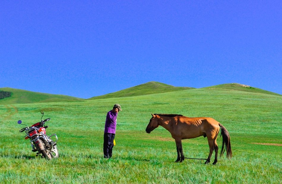 man, bike and horse on a field in Mongolia
