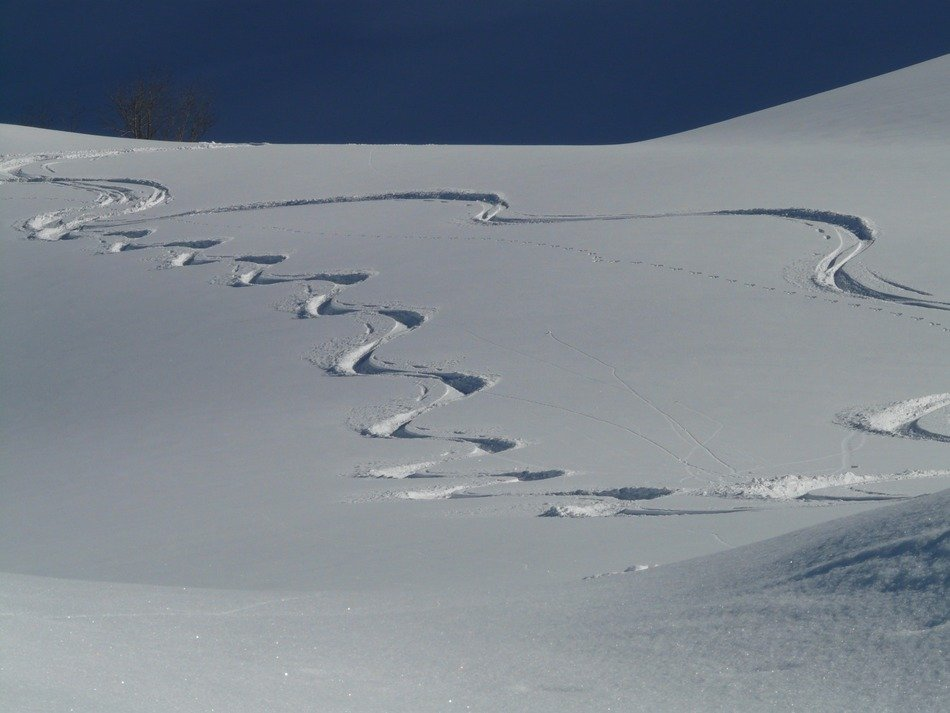ski tracks in the deep snow