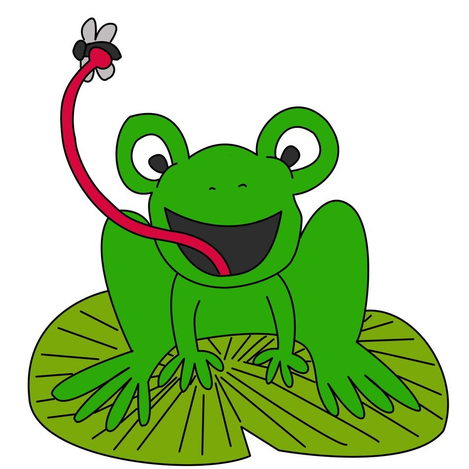frog with insect on the language is cartoon character