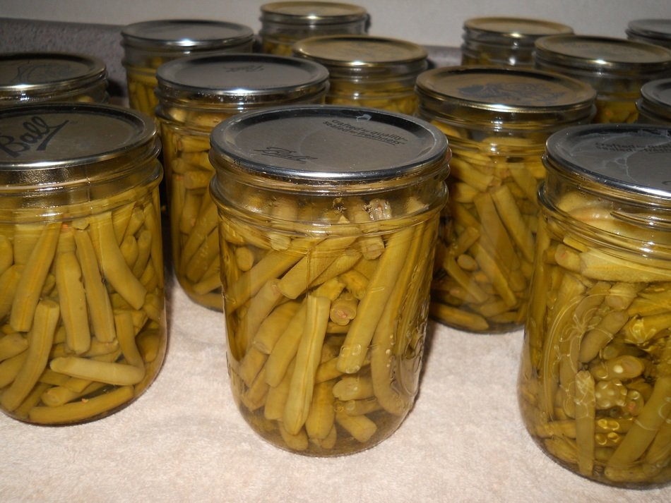 preserved beans