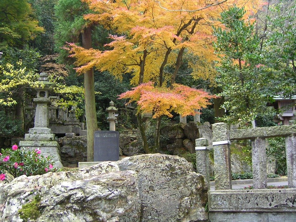 Japanese maple among the stone sculptures