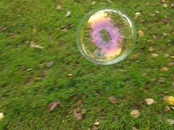 soap bubble outdoor