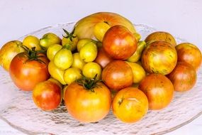 yellow tomatoes on a white plate