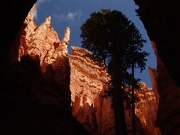 Orange Rock Formations in Bryce Canyon