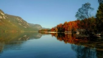 clean beautiful lake Bohinj in slovenia