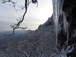 long icicles in the mountains in winter