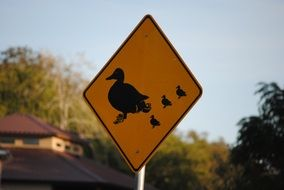 road sign with a drawing of a duck with ducklings