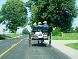 amish in harnessed wagon