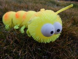 toy caterpillar on the grass