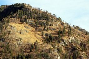 side of forested mountain at fall