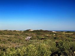 green fire island in the ocean