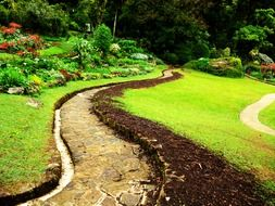landscape design in the park in Sri Lanka