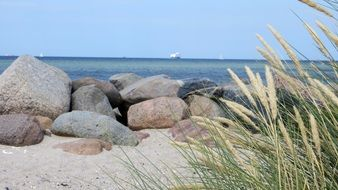 Baltic beach coast