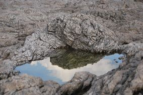 puddle in stony ground
