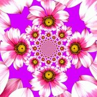 abstract pattern with pink flowers