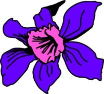 graphic image of a bright flower with purple petals