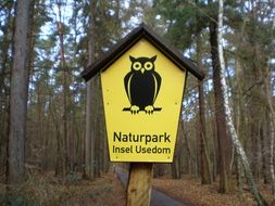 owl drawing on a forest sign