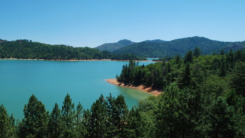 panorama of a green forest by the lake in California
